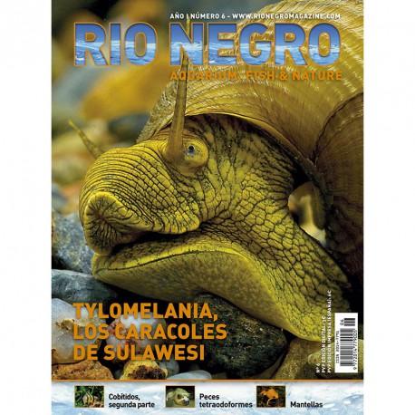 RIO NEGRO num. 6