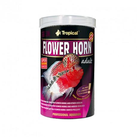 Flower Horn Adult 1L
