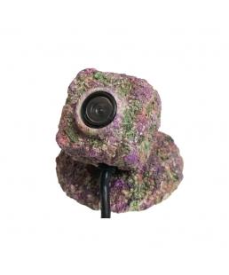 Camuflaje de roca Reef-Cam TMC