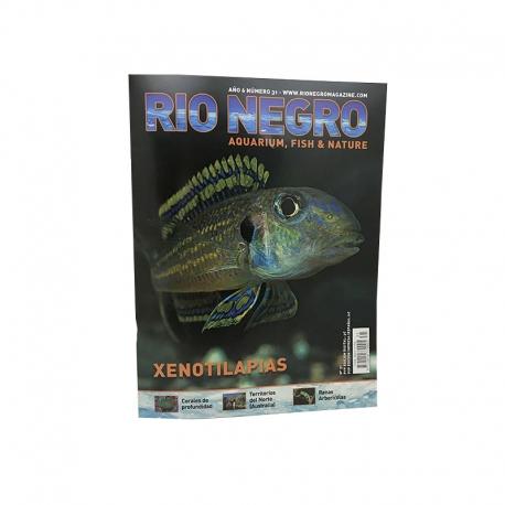 RIO NEGRO num. 31