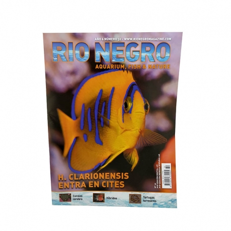 RIO NEGRO num. 32