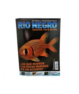 RIO NEGRO num. 33