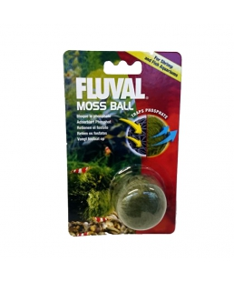 MOSS BALL ANTI ALGAS