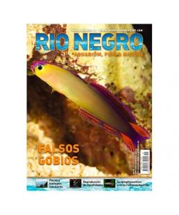 RIO NEGRO num. 19