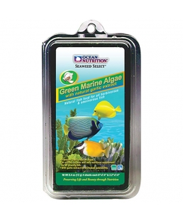 Green Marine Algae 12g