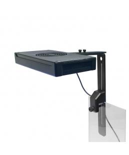 CORAL LED LAMP