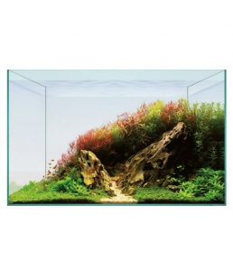 AQUASCAPE BASIC